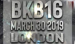 More Info for BKB 16