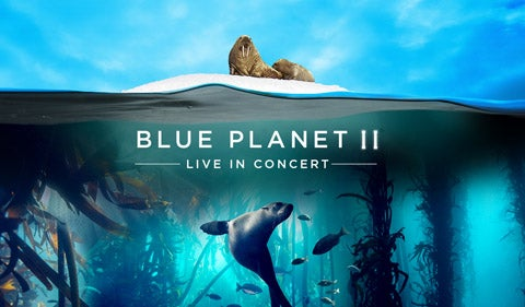 More Info for Blue Planet II - Live In Concert