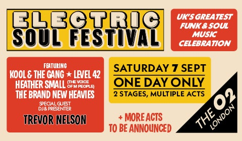 More Info for Electric Soul Festival
