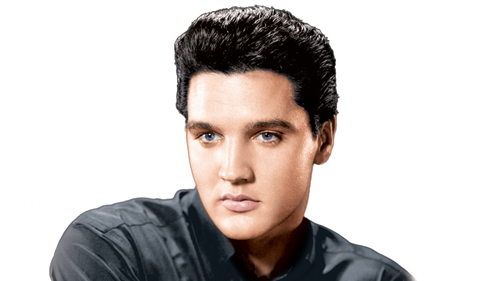 More Info for Elvis In Concert - Live on Screen