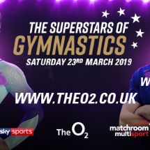 More Info for The Superstars of Gymnastics