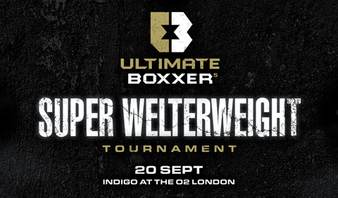 More Info for Ultimate Boxxer 5